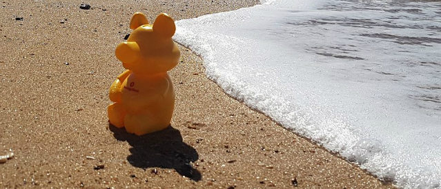 Piggy money box on the beach with sand and waves.