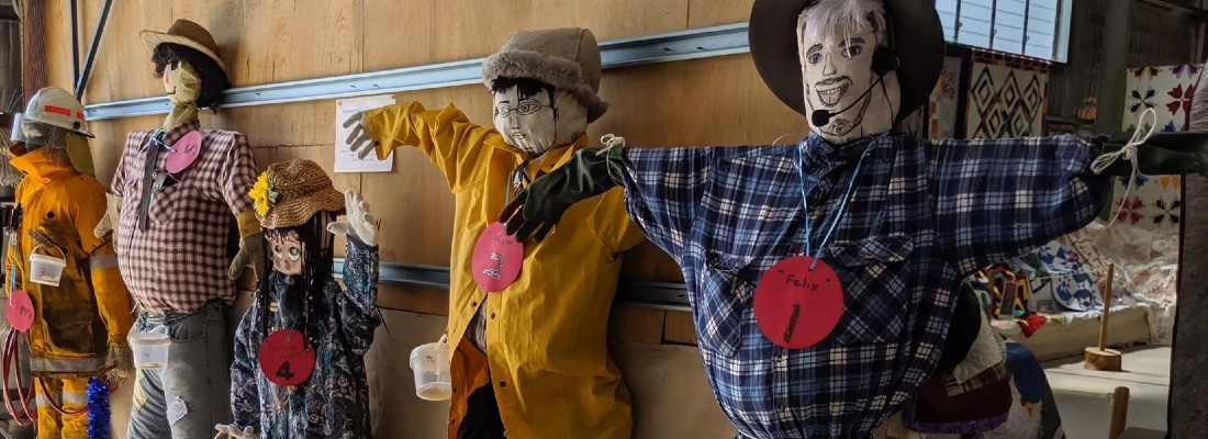 A display of homemade scarecrows at the Stanthorpe show.