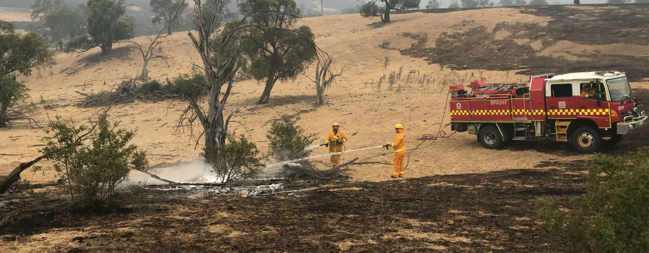 Volunteers in a paddock with fire truck, using hose to put out smouldering trees.